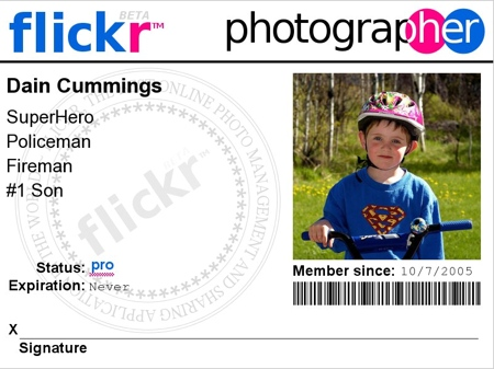 Dain Flickr Badge